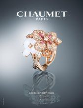 Bild Nummer 3 in Chaumet Brunn advertising
