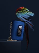 Bild Nummer 2 in  Accessories photography by Wolf-Dieter Böttcher