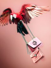 Bild Nummer 5 in  Accessories photography by Wolf-Dieter Böttcher